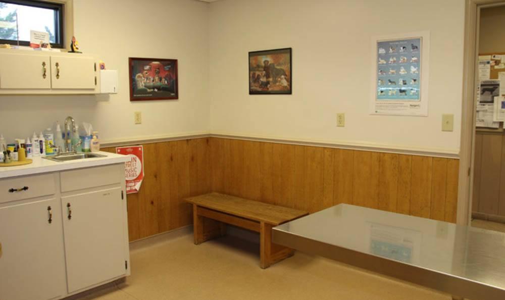 Exam Room At The Ridge Animal Hospital