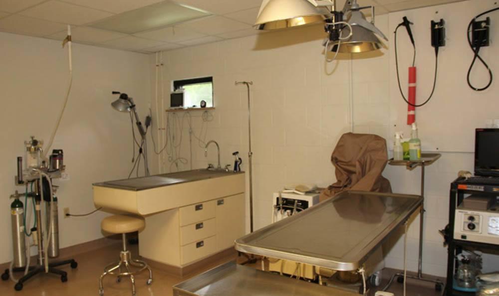 The Ridge Animal Hospital Surgery Room