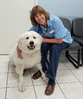 Barbara Hughes, DVM at Copperas Cove Animal Hospital