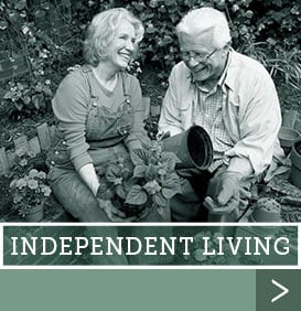 Independent Living at Savannah Court of Camilla