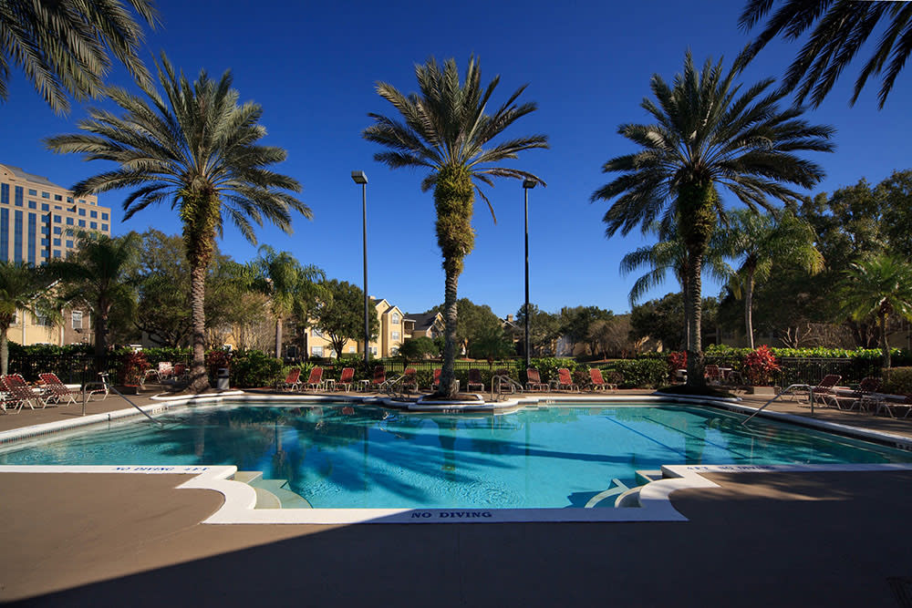 The Grand Reserve at Lee Vista resort-style pool surrounded by palm trees