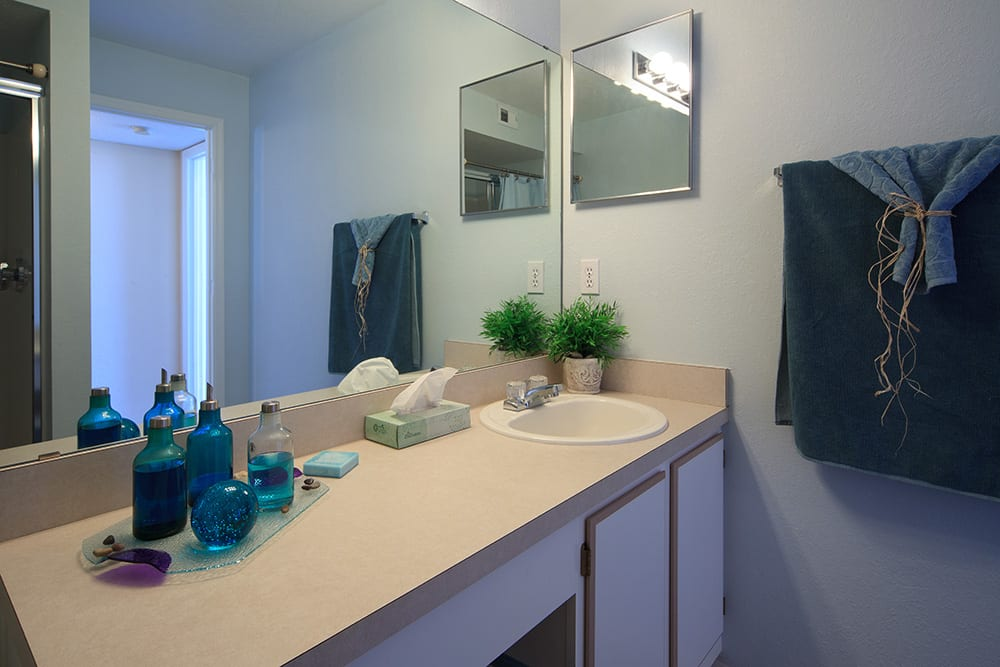 Modern bathroom at The Grand Reserve at Lee Vista