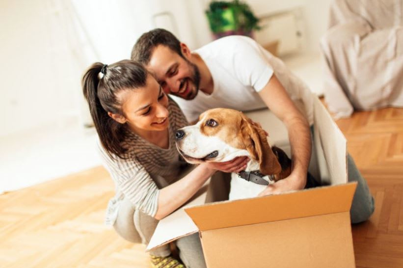 We're pet friendly at Ancora Apartments in Orlando.