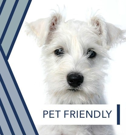 Pet friendly apartments at Millstone of Noblesville