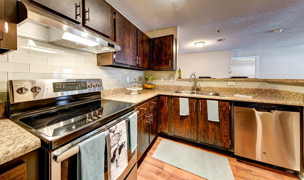 Stainless steel appliances at Marquis at Briarcliff