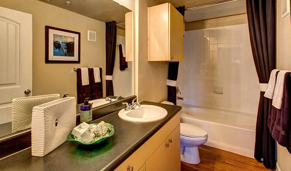 Comfortable bathroom at Marquis at Canyon Ridge, Austin