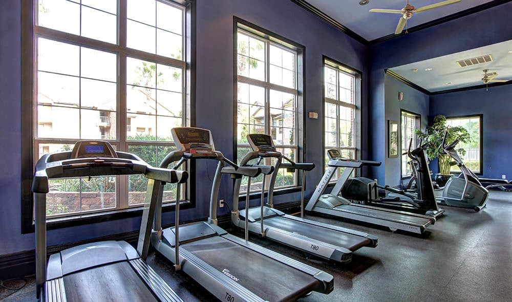 Gym with a view at Marquis on Briar Forest