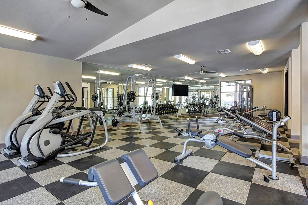 Fatness center with ellipticals at The Marquis at Barton Trails