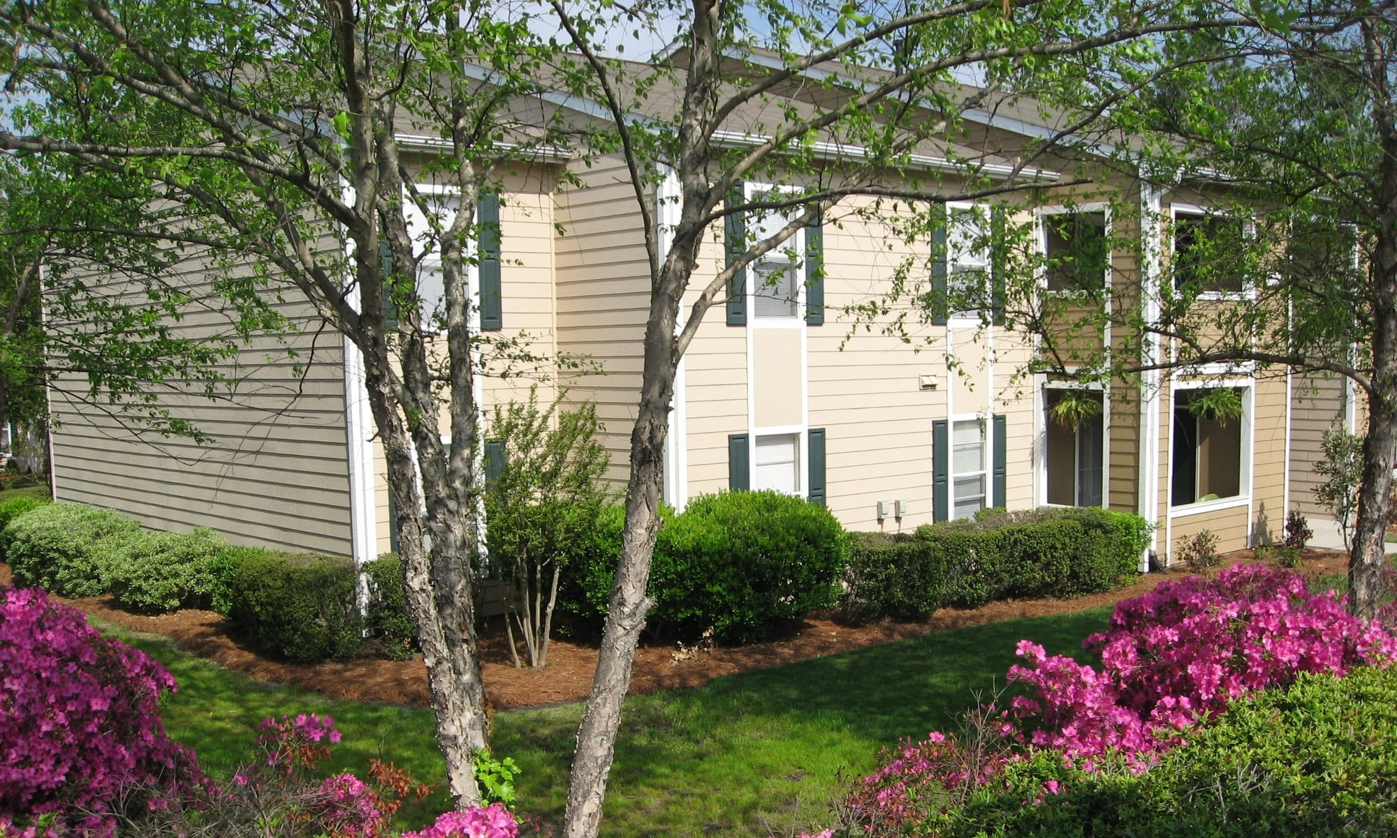 The Grove at Spring Valley has great apartments at great prices