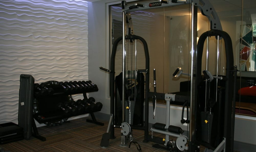 Weight room at Silver Spring, MD apartments