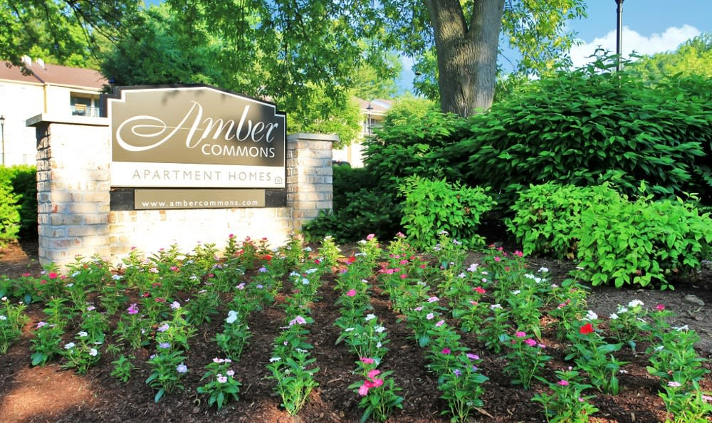 Front of Amber Commons in Gaithersburg, MD