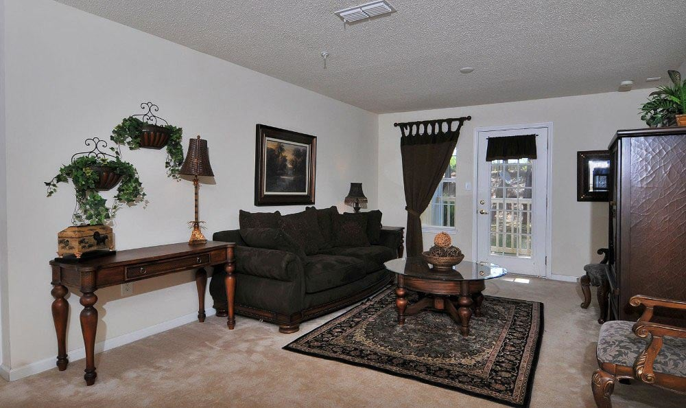 Apartment living room at Arbor Lake Apartments in Covington, GA.