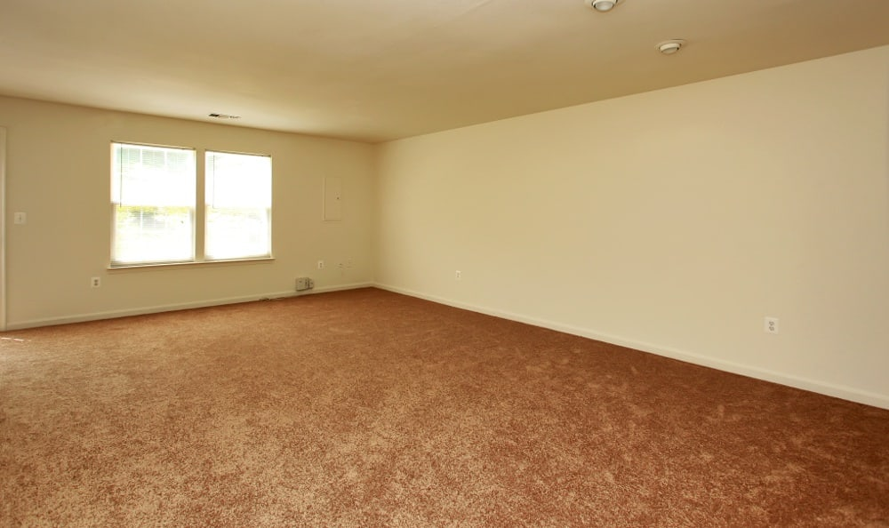 Spacious living rooms here at our Fredericksburg apartments