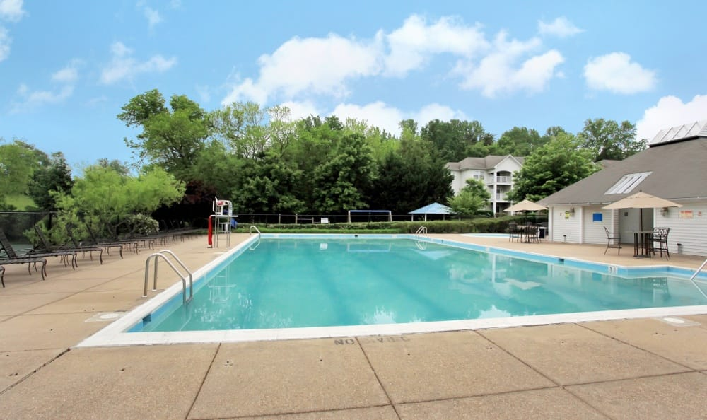 Olympic Size Pool at Apartments for rent at Highland Commons in Warrenton, VA.