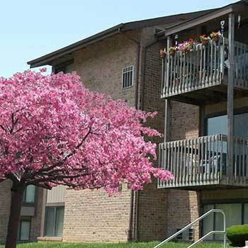 View our Mansfield Woods Apartments located in Essex, MD