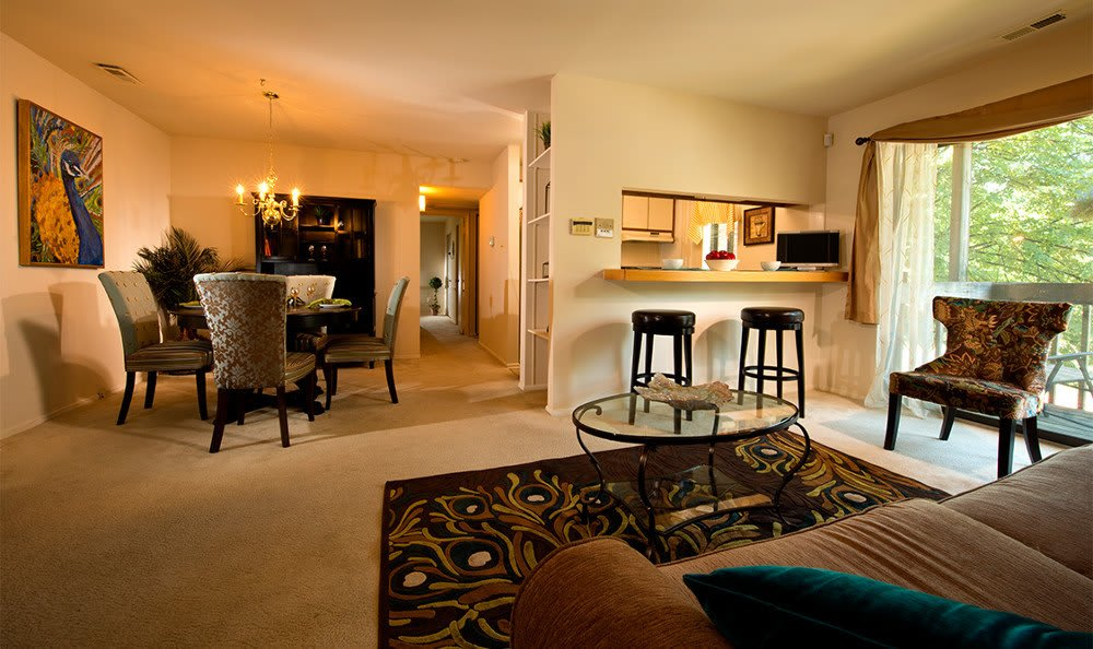 Our Columbia apartments have designer living rooms