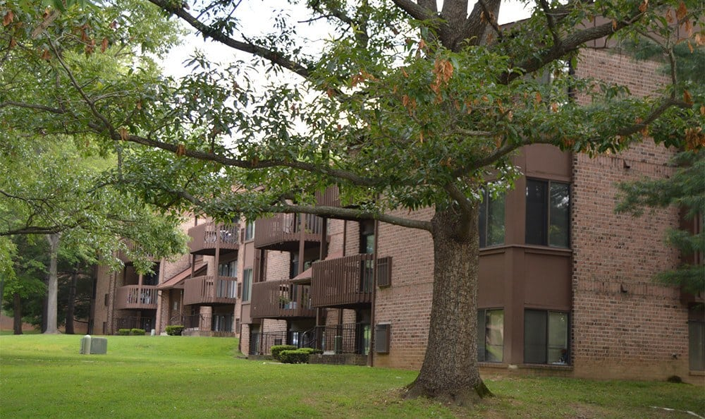 Beautiful Cockeysville apartments for rent