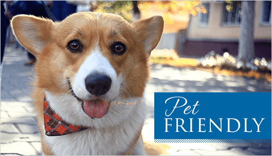Pet Friendly senior living community