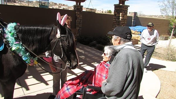 Palmilla Senior Living residents visiting horses.