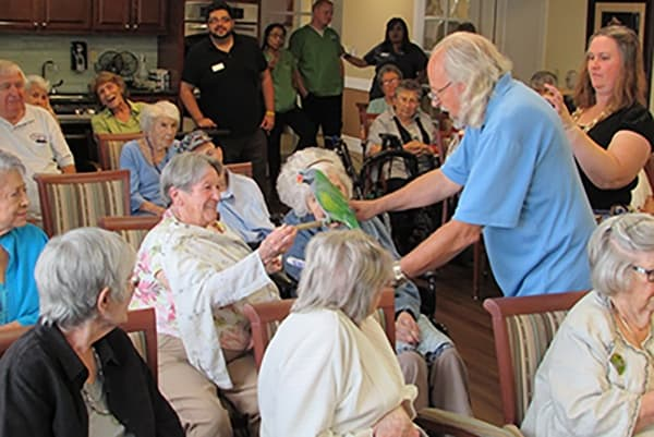 People getting excited about a guest parrot at Palmilla Senior Living