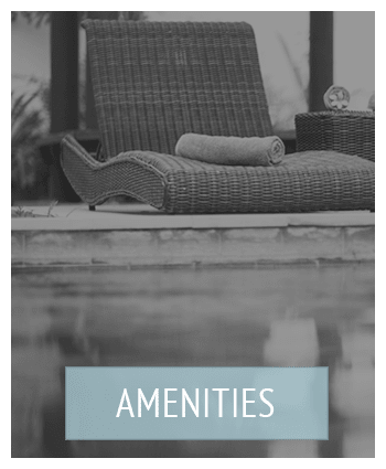 All the amenities at West River Apartments