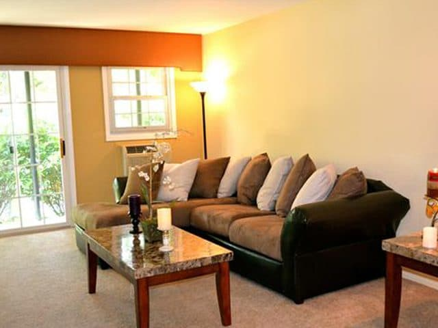 Living room at Eagle Rock Apartments at Woodbury.