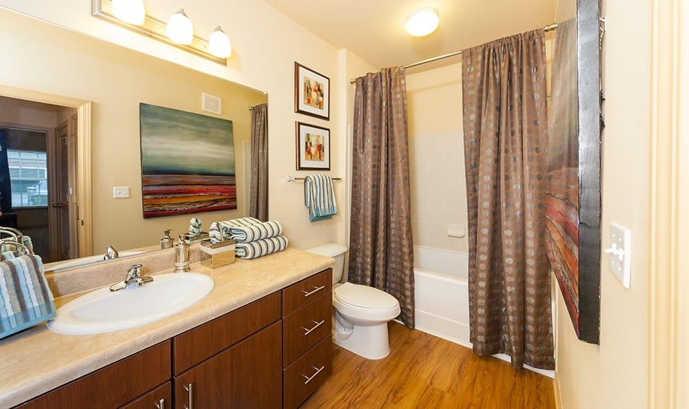 Ooltewah apartments bathroom