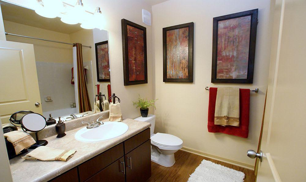 Murfreesboro Apartments bathroom