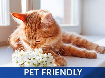 View our pet policy at Lake Jonathan Flats in Chaska, Minnesota