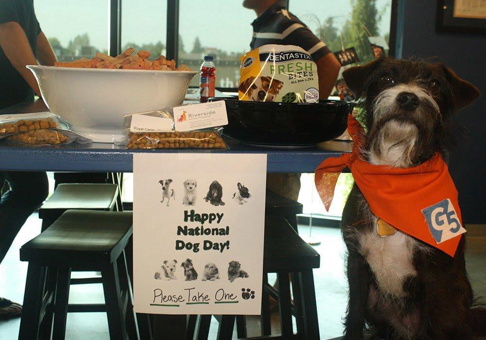 National Dog Day at G5