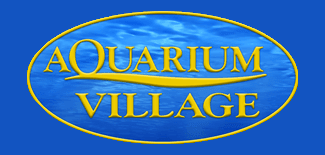 Aquarium Village