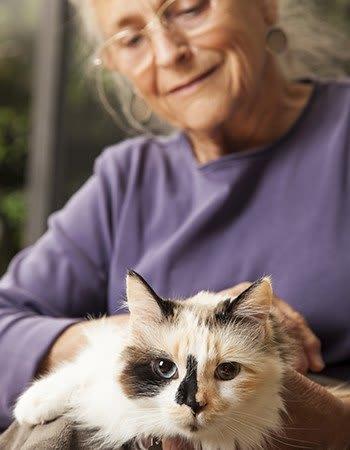 Pet friendly at the senior living community in Sacramento