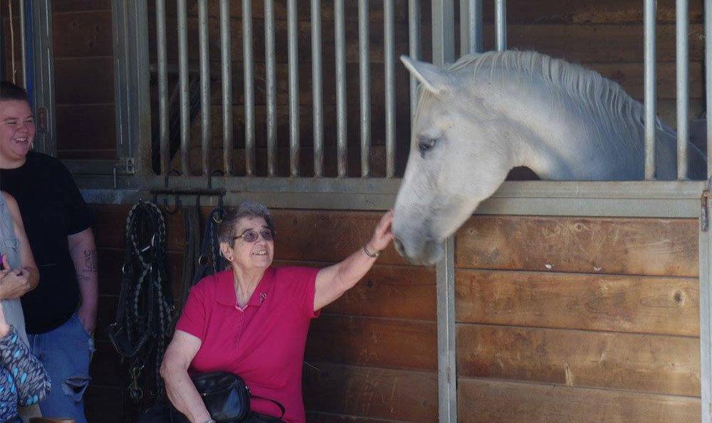 Resident Petting Horse at the Senior Living Community in Roseville