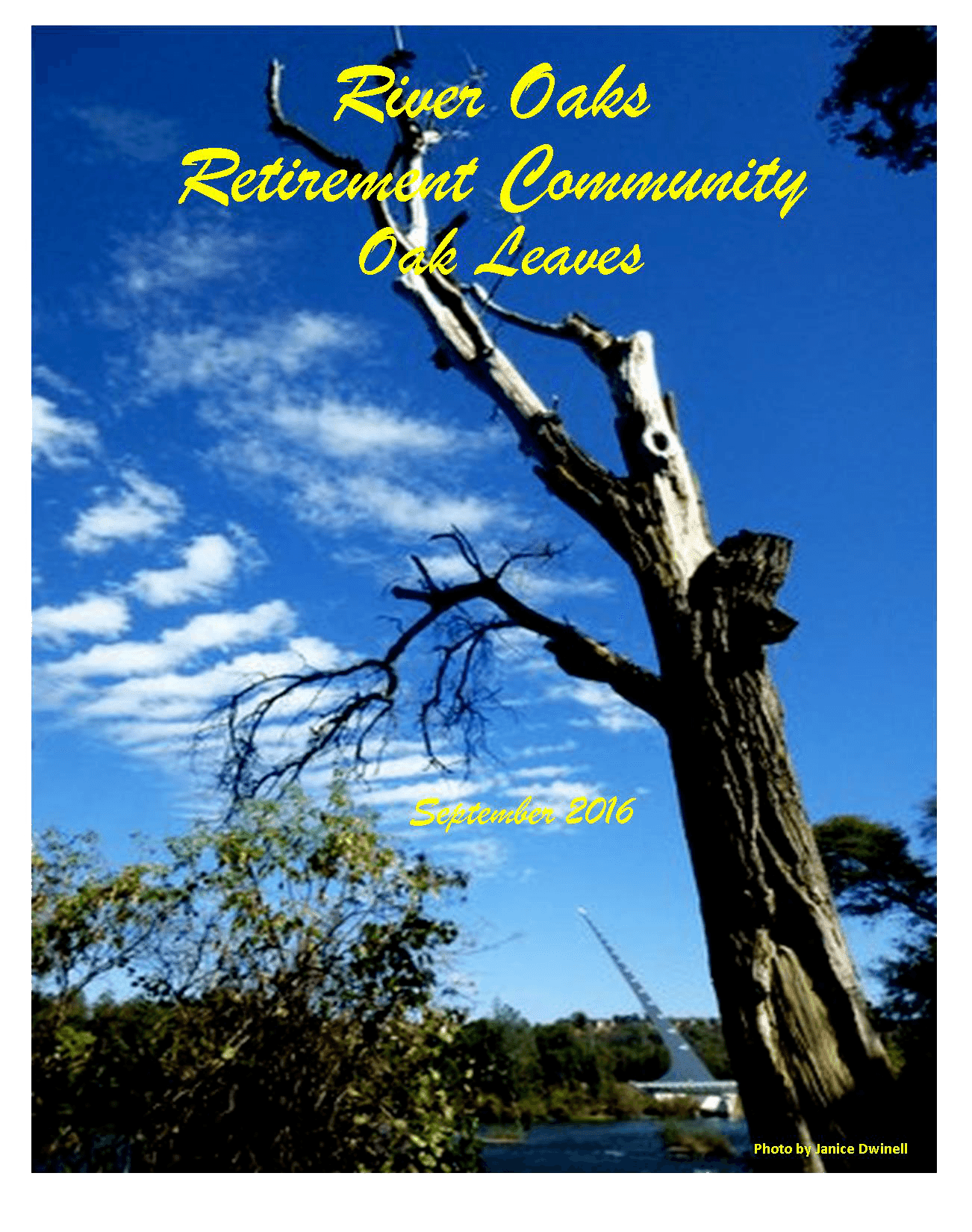 Our community newsletter