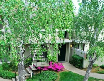 Sacramento, CA apartments for rent near you