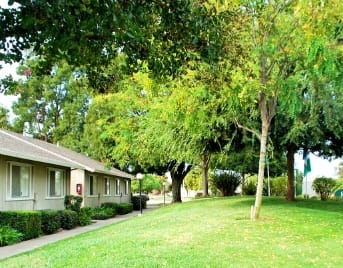 Apartments for rent in Lodi, CA