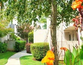 Lodi, CA apartments for rent