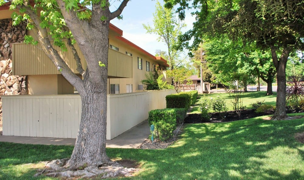 Outdoor scenery at  Arden Palms Apartments, in Sacramento, CA