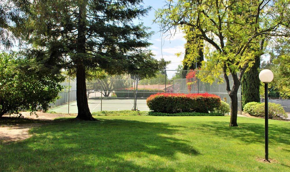 Tennis courts at San Juan Hills in Fair Oaks, CA