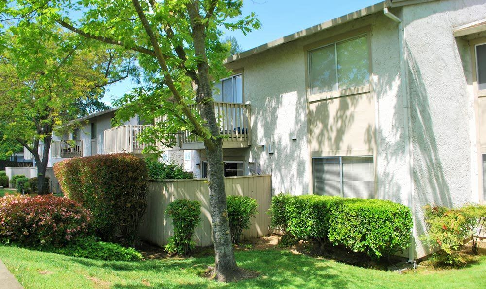 Grassy exterior to apartments in Fair Oaks