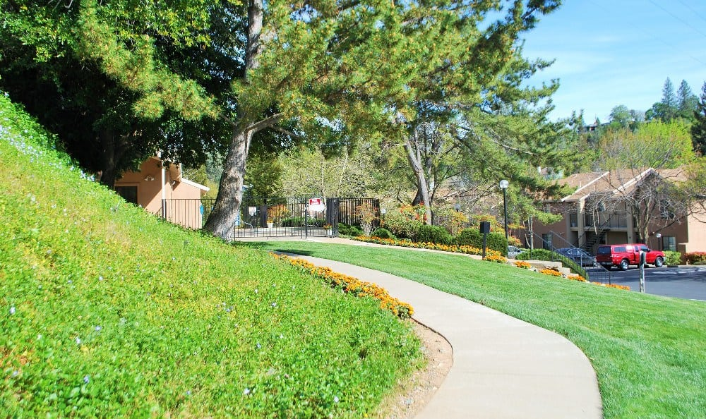 Grassy Area at Our Apartments In Auburn Ca