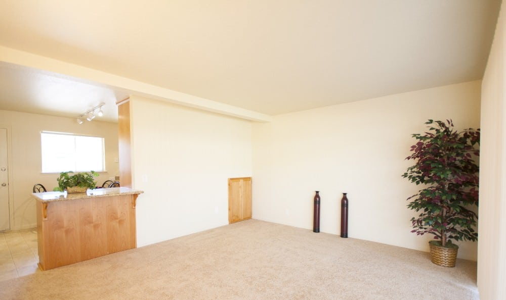 Living room at Castle Hill Apartments