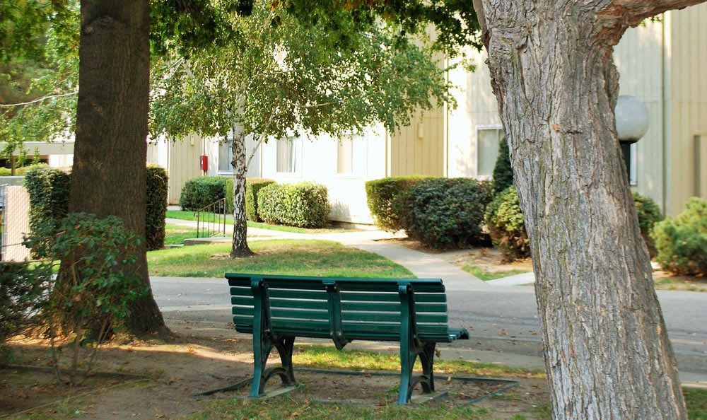 Bench at Lodi apartments