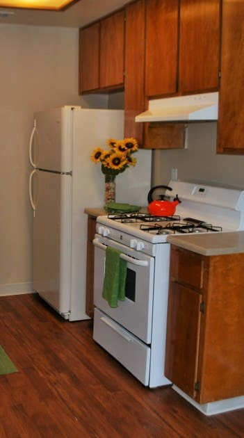 Spacious floor plans at the apartments for rent in Lodi