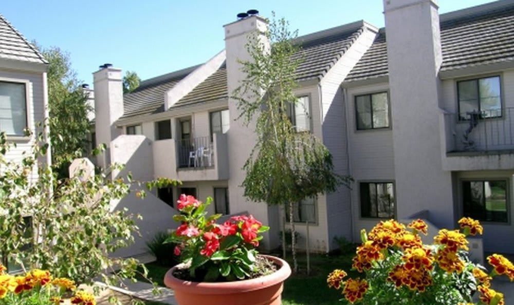 Garden and Exterior at River's Edge Apartments in Lodi, CA