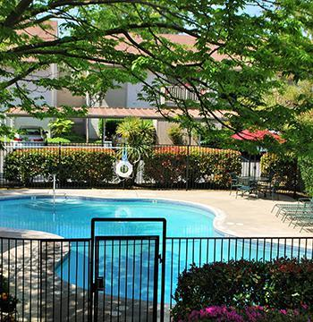 Pool area at the apartments owned by Ray Stone Inc.