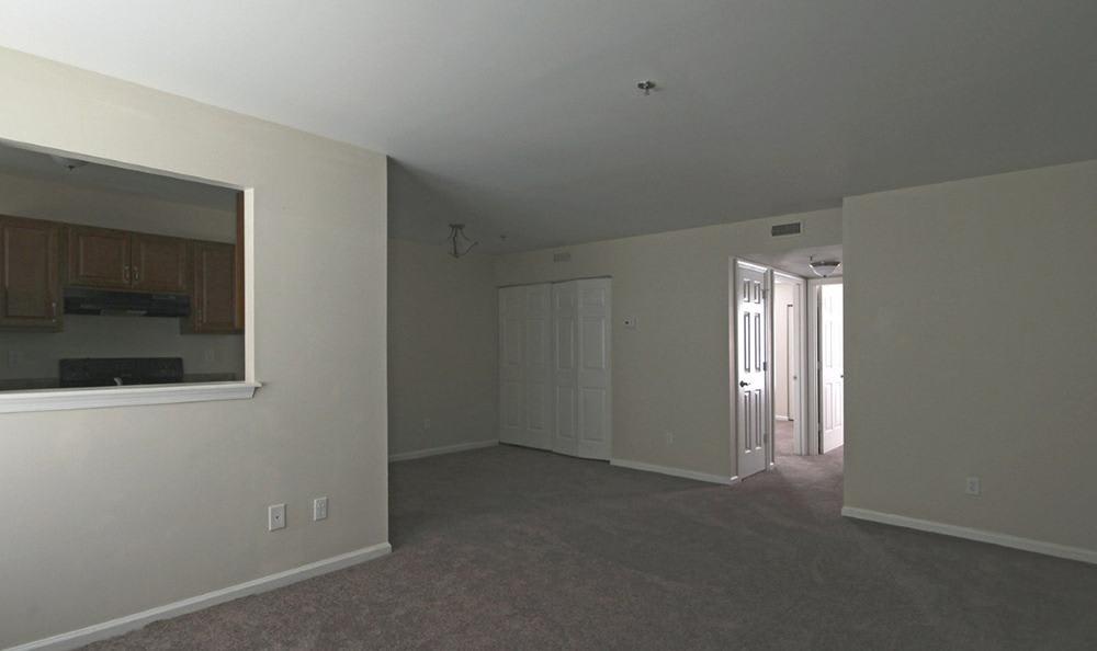 Open Floor Plans At Apartments In Chesapeake Virginia