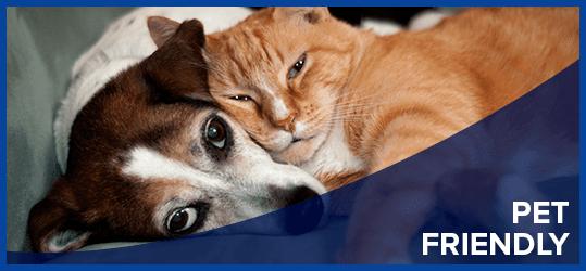 Pet Friendly Callout