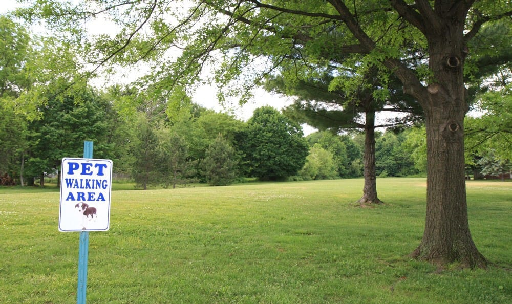 Park Near By Beckford Place Apartments With Pet Walking Area In North Canton, OH