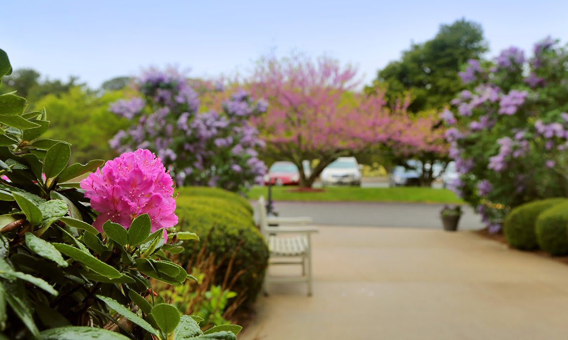 You'll find beautiful and immaculate flora and landscaping at Maplewood at Mayflower Place in West Yarmouth.